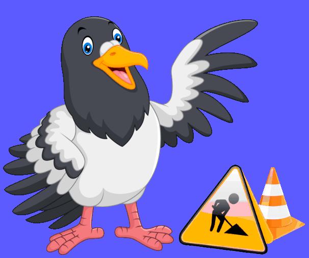Pigeon Phoenix Build